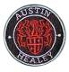 autoversicherung-austinhealey_20091223_1296341140